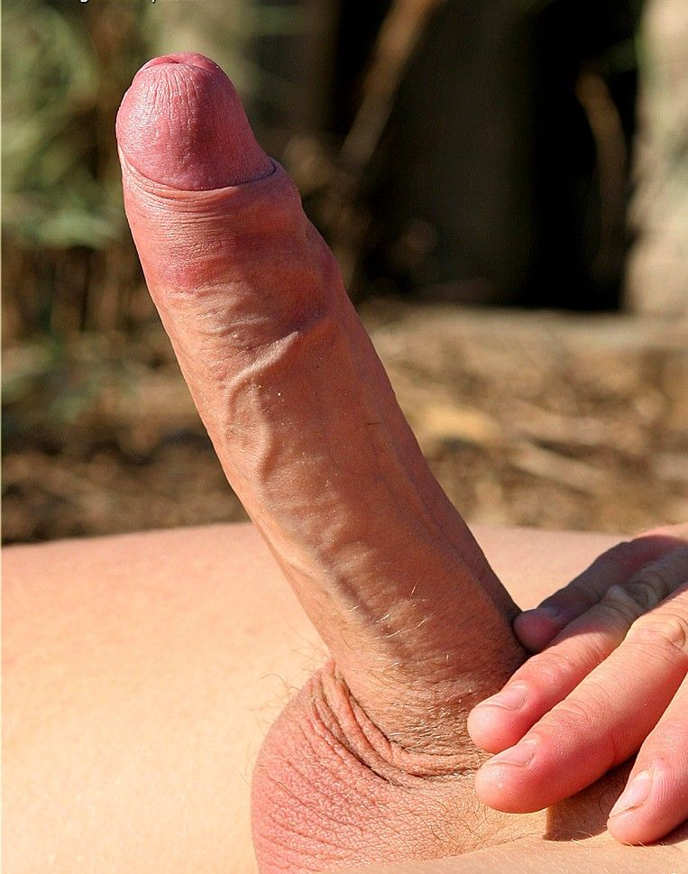 Shemales Large Beautiful Penis