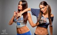 Bitches Love Smiley Faces: Brie & Nikki Bella Twin Hottness For Super