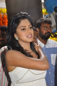 AMALA PAUL NAVAL,AMALA PAUL PANTY,AMALA PAUL NUDE PHOTOS,AMALA PAUL