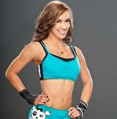 wwe wallpapers | wwe 2013: aj lee hot pictures 2013