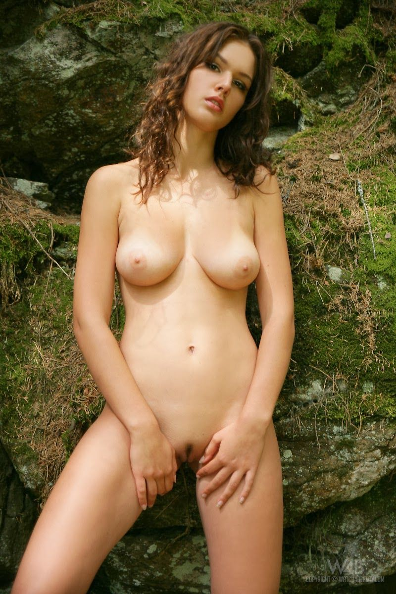 Forest Anal Adventure