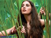 nargis+fakhri+wallpapers++nargis+fakhri+latest+wallpapers+