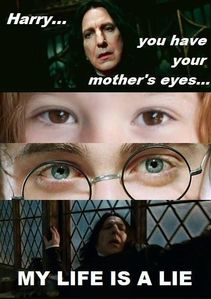 "Responses to ""Harry You Have Your Mother's Eyes - My Life Is A"