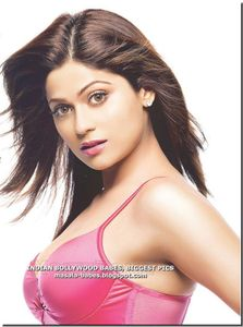 LIFE-SIZE PICTURES BOLLYWOOD ACTRESSES: Shamita Shetty