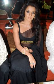 Celina-Jaitley-Boobs-clearly-visible-in-saree1 jpg