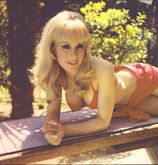What ever happened to… : Barbara Eden of I Dream of Jeannie