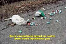 Gail's Gory Details: More Road Kill, Easter Version