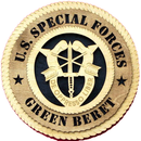 American Ranger: Seven Green Berets Awarded The Silver Star