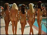 Miss Nude Pageant World #15 | 500 x 374