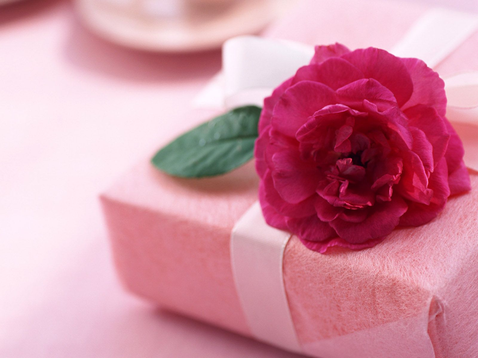 A Pretty Pink Gift Awaits You