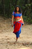 shweta menon posing in wet saree and blouse