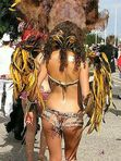 Interesting Green: Samba dancers  Brazil Carnival  (9)