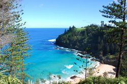 Bruce Wedderburn's Trip Reports: Norfolk Island  April 2011