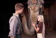Wifey�s Flick Pick: Water For Elephants (2011)