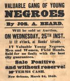 "Valuable Gang of Young Negroes,"" advertisement for a slave auction"