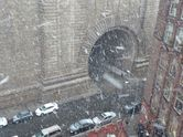mcbrooklyn: Nor'easter Hits Brooklyn: Snow, Rain and Wind Kick In