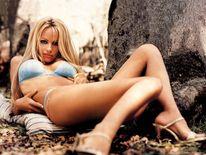 Imagini Vedete Sexy, Pamela Anderson