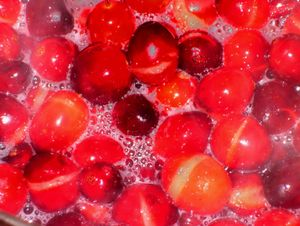 Food Memories: 179  Cranberry Sauce, Too Easy