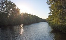 The Boise River just after sunrise
