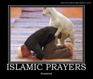 Islamic prayers answered - goat humping man poster