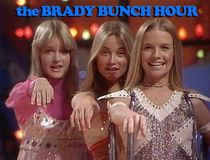 dougsploitation: The Brady Bunch Variety Hour