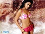 Desi Divaz: Desi Divaz: Sex Godded Shriya Saran in Hot Looks