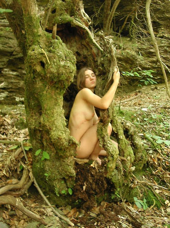 Nude Forest