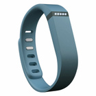 Fitbit Flex Wireless Activity + Sleep Tracking Wristband Slate | The Shop Of Linda
