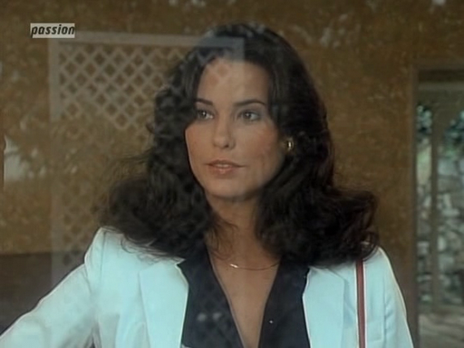 Cristina Raines Gazes Out A Window In This Scene From The Flamingo