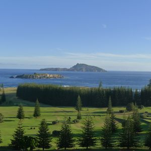 Norfolk Island, Reports from CSIRO & OECD, Art, Middle East, Australia