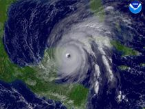 Tag Archives: Hurricane Wilma