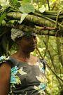 Kvinder fra den lokale landsby henter planter og rødder i skoven.