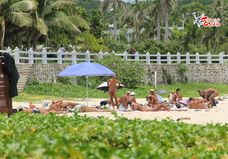 Nude beach in Hainan