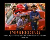Inbreeding  Picture