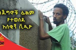 "Funny Scene from ""Jeginochu"" Ethiopian Movie"