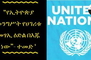 "ETHIOPIA -'The futurity of Ethiopia on the hands of gov't""-UN"