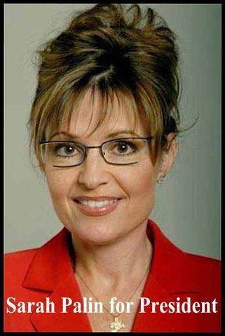 Sarah Palin | Hurricane Alley by J  D  Longstreet