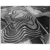 Amazon.com: Aerial View Of Contour Plowing,ploughing,farming,1930s