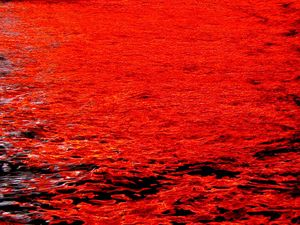 waters of the Azov Sea turned bloody red close to Berdyansk village