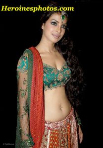 Priyanka Chopra spicy navel showing pics