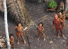 Rainforest: A wider view of the first picture shows the tribe lives in