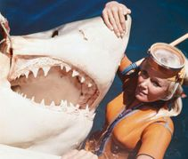 Come on over Valerie: Ron Taylor's wife poses with a great white shark