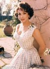 Gina Lollobrigida targeted by bizarre sham wedding plot as ex toyboy