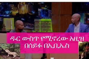 Seifu on EBS – Interview with Azize who lives in forest