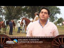 SIEMBRA Y COSECHA TV: Concurso y jura de caballos peruanos  YouTube