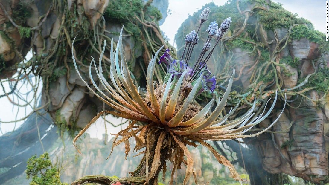 First look inside Disney's new 'Avatar -- World of Pandora'