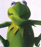 Muppetational Gold Medal: Kermit the Frog VS Cookie Monster  The