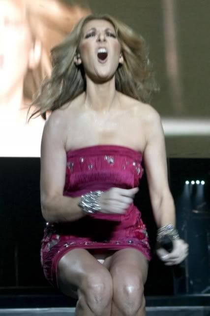 Celine Dion Flashes
