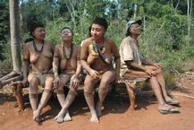 Amazon Tribe Down To Five As Oldest Member Dies