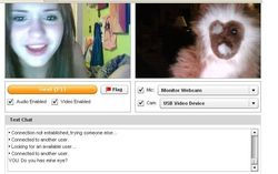 nm chatroulette ^^stickam shuffle  BBV4Life  Two Plus Two Poker